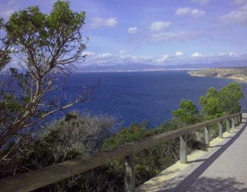 Winter adé, Mallorca olé.. na Danke!