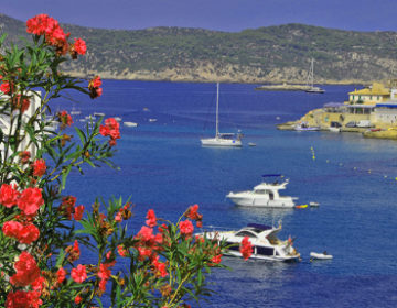Touristensteuer wird fast vollständig für Umweltprojekte eingesetzt
