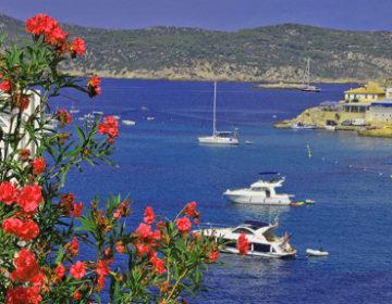 Mallorca-Tagungen in Zeiten von Corona – wie geht das?
